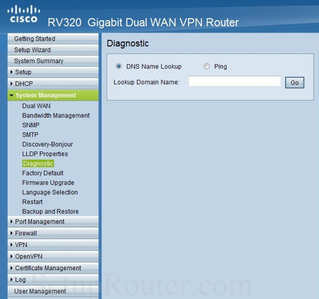 Cisco RV320 Screenshot Diagnostic