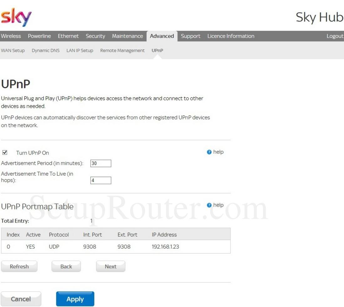 Sky ER110 Screenshot UPnP